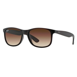 Ray Ban  ANDY RB4202 607313 55