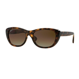 Ray Ban  RB4227 710/T5 55