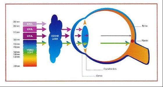 Kako utiču svetlosni talasi i UV zračenje na oko
