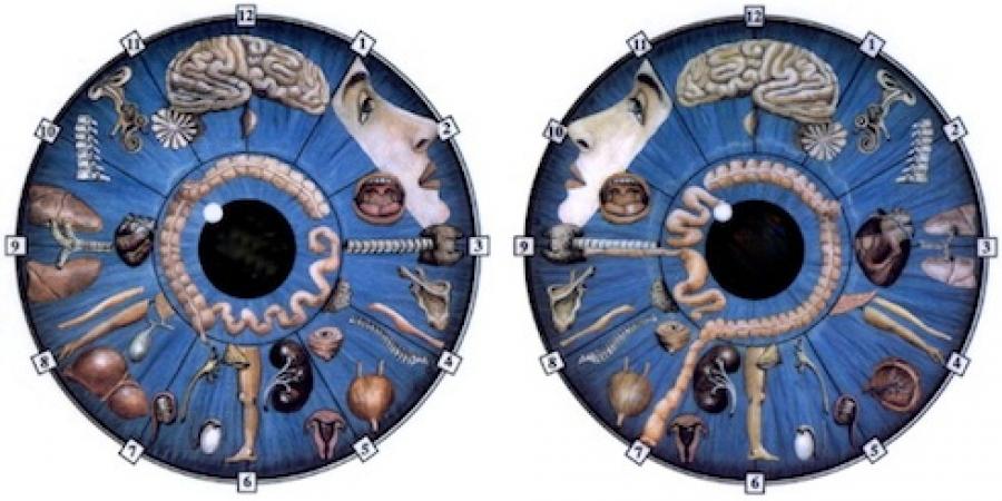 Oči kao ogledalo duše