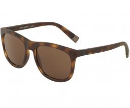 Dolce & Gabbana DG6102 302873 55