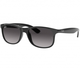 Ray Ban ANDY RB4202 601/8G 55