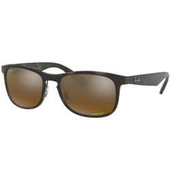 Ray Ban RB4263 894/A3 55